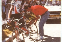 1986 - GIS OECE